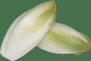 Chicoree abgeblidet