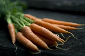 Mehrere Karotten auf Schieferplatte
